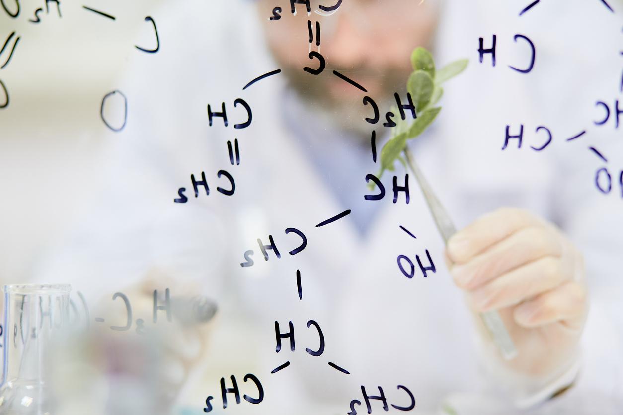 Hvordan fungerer en hydrogen brenselcelle